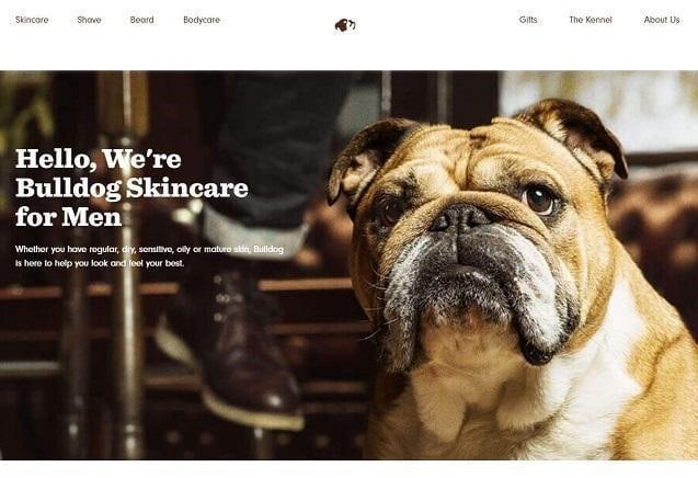 25 ví dụ tuyệt vời về các trang về chúng tôi