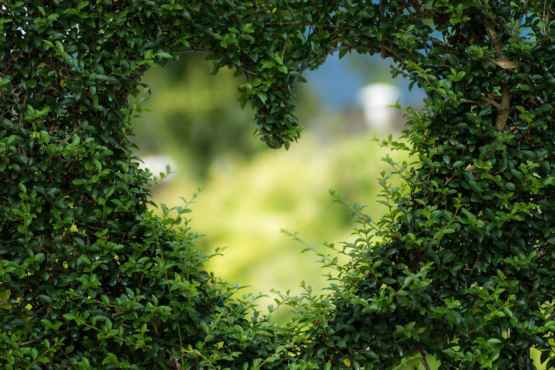 6 định nghĩa hàng đầu về tình yêu mà bạn nên biết 2